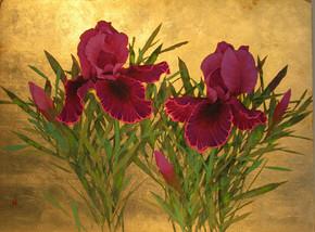 手绘花卉素材  手绘  中国风