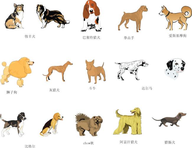 手绘各种狗