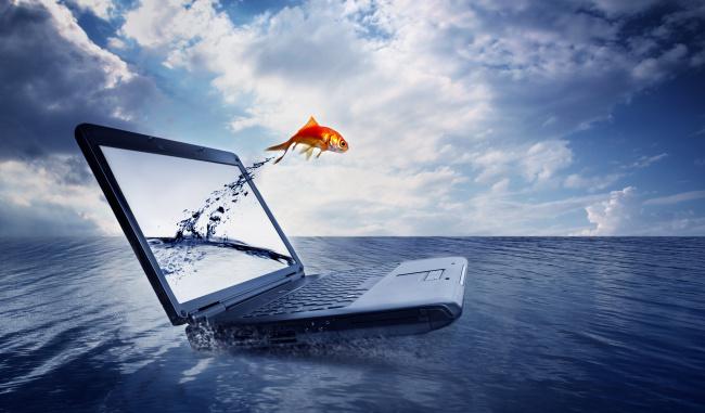 笔记本电脑 创意金鱼广告设计海报免费下载(图片编号