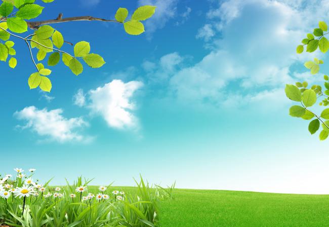 春天风景 春天气息 绿色 清新 草绿 花朵 野花 大自然 阳光 高清图片