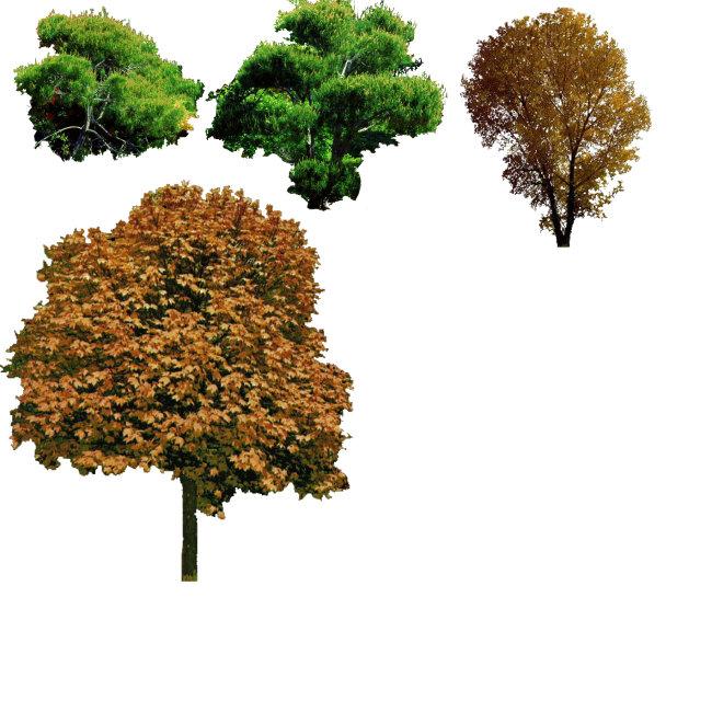 树立面 景观 景观手绘效果图