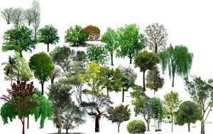 顶视网_【ps树】图片免费下载_ps树素材_ps树模板-千图网