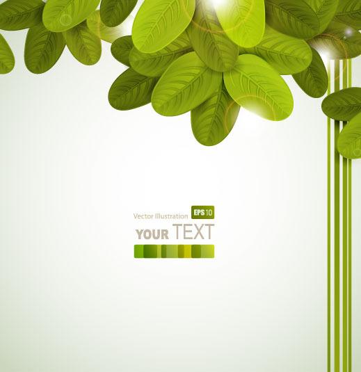 漂亮的树叶背景矢量图免费下载_格式:eps(图片编号:)