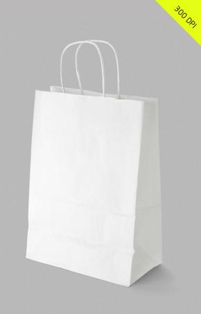 企业VI提案 精品手提袋模版