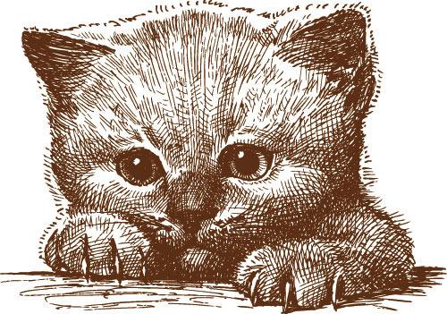 可爱手绘小猫矢量素材
