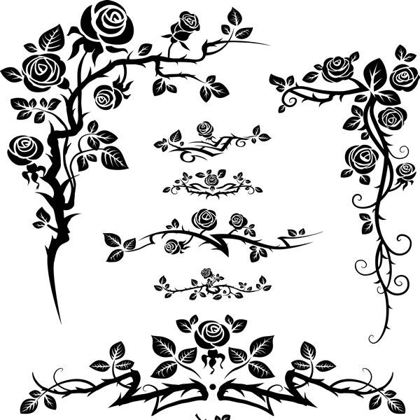Лилия мартагон фото  сорта посадка и уход  Сайт о саде