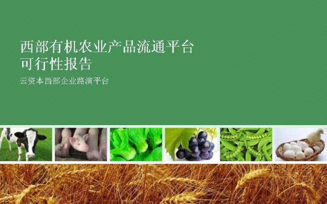农产品营销PPT素材
