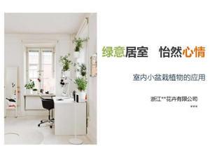 室内盆栽植物PPT幻灯片