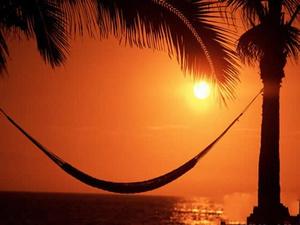 夕阳椰树海景PPT模板