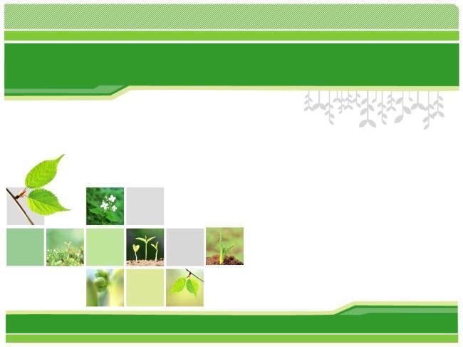 绿色幼芽经典毕业答辩PPT模板免费下载