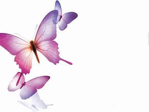 动态蝴蝶背景ppt模板