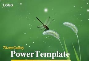 漂亮的蜻蜓ppt动画模板下载
