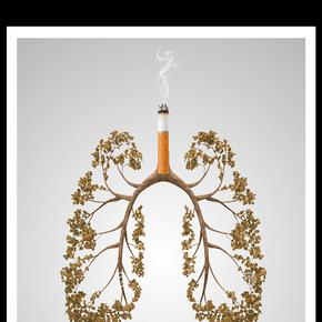 2017年创意吸烟枯黄的肺公益海报