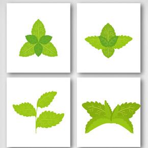 卡通绿色手绘薄荷叶子元素