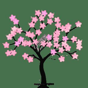 樱桃树的树枝