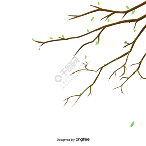 春天樹木綠色嫩芽