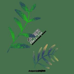 綠色植物枝葉葉片