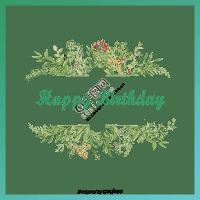 清新绿色生日贺卡边框