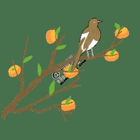 鸟类和分支