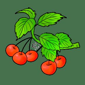 手绘红色果果插画