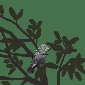 水墨鸟和树枝插画