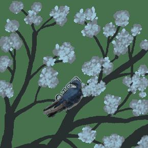 手绘大树和鸟插画