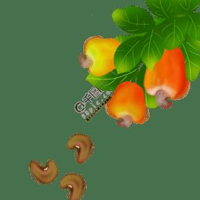 果 零食 食品 果仁 腰果 彩色系