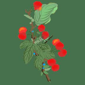 红色的樱桃手绘插画
