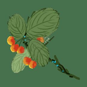 手绘水墨新鲜樱桃插画