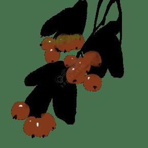 中国风古典风格古风水墨矢量图樱桃