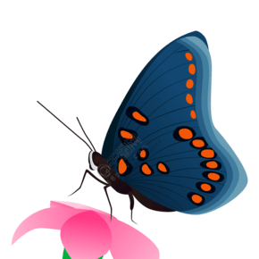 矢量中國風蝴蝶和花