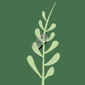 卡通綠色點點植物葉子免扣圖