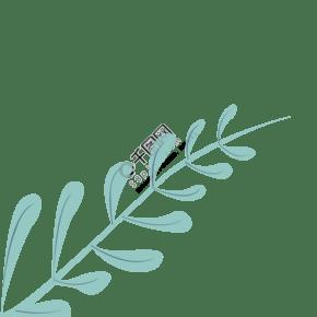 卡通小小藍色葉子植物