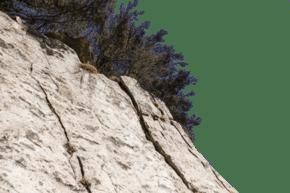 陡峭植被稀疏的山峰