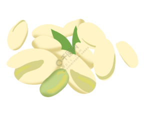 美味的开心果插图