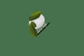 白色茶杯绿色茶叶