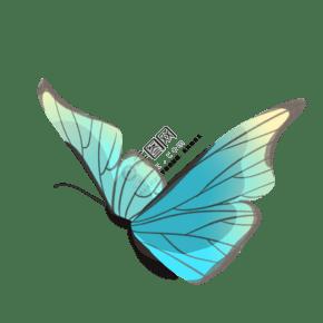 飞舞蓝色昆虫蝴蝶