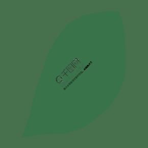 一片綠色的葉子