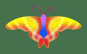 唯美昆虫花蝶彩蝶