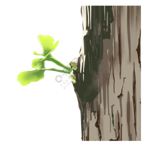 春天森系小清新手繪插畫綠色發芽植物