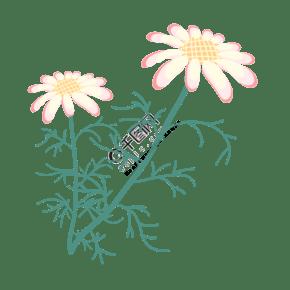 卡通淡黄色洋甘菊