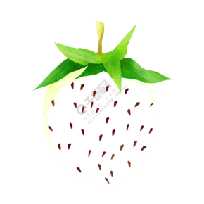 白色斑點草莓