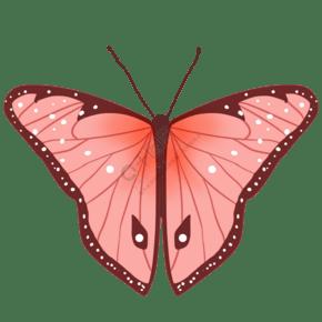 昆虫蝴蝶唯美粉色