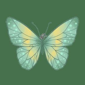 昆虫蝴蝶唯美