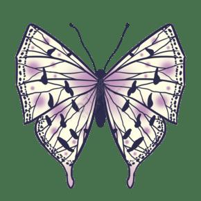 昆虫蝴蝶飞蛾