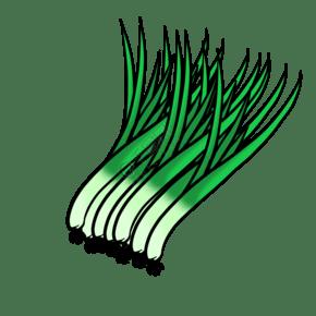 新鮮的洋蔥標簽矢量素材