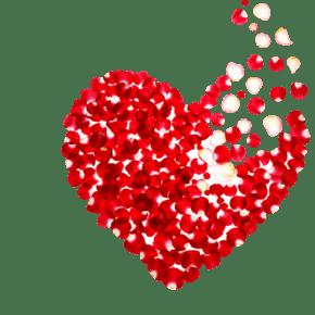 情人节玫瑰花瓣爱心形状免抠素材下载