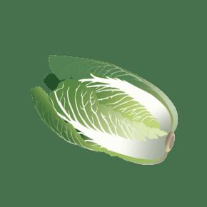 卡通白菜手绘蔬菜
