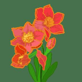 小清新?#24674;?#33457;水彩花朵粉色手绘花