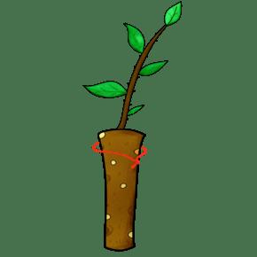 手绘植物卡通盆栽